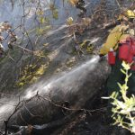 Small brush fire breaks out on Hwy. 243 near Franklin