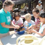 """Budding Botanists"" discover local species"