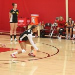 Hemet girls volleyball bests Temecula