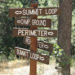 Only in Idyllwild: County Park II …