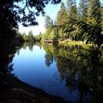 Lake Fulmor mirror