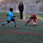 Sports Roundup: Town Hall Youth Soccer