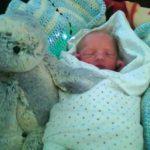 Birth Announcement: Adam Tim Wellman