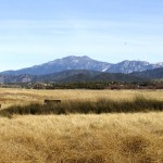 Outside Idyllwild: The Aguana-Butterfield Overland Mail Station and other stories