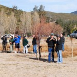 40 volunteers come out for Lake Hemet bald eagle count