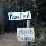 Ron Paul support in Idyllwild