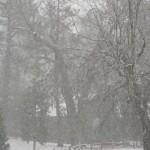 Winter storm here
