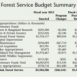 Forest Service 2013 budget request stable