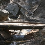 Nature Center gets new creek bridge