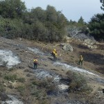 Forest Service starts winter prescribed burn program