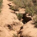 May Valley trails have Forest Service future