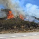 Cranston Fire burns 20 acres