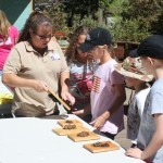 What's new for the Idyllwild Nature Center …