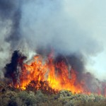 Buck Fire at 3,000 acres: Lightning determine the cause