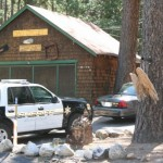 Idyllwild Crime sweep nets 12 arrests: Department is building additional leads
