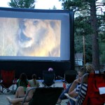 Town Hall screens 'African Cats' in the park