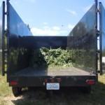 Agents remove 12,000 to 15,000 marijuana plants from three Lake Hemet areas