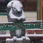 Idyllwild — snow!!