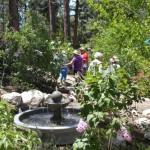 Idyllwild Garden Tour returns