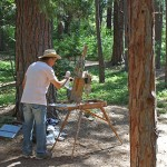 PHOTOS: Artists capture Idyllwild's scenery at festival