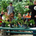 Town Hall kids learn about gardening