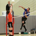 Sports: Town Hall Adult Coed Volleyball
