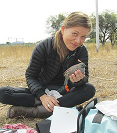 Dr. Jennifer Gee studying quail in the field. Photo courtesy of Dr. Gee