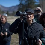 Volunteers needed for bald eagle count: Begins Saturday, Dec. 13