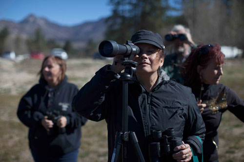 Blanca Vega takes a turn peeking through a spotting scope at the Lake Hemet bald eagle count last Saturday. Bird spotters come out once a month to watch the two resident bald eagles perch in the trees and occasionally swoop down for fish. Read more on page 10. Photo by John Pacheco
