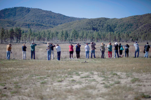 A crowd of bird spotters line the shore of Lake Hemet to get a glimpse of the two resident bald eagles for the monthly bald eagle count.        Photo by John Pacheco