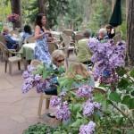 Walk among the lilacs