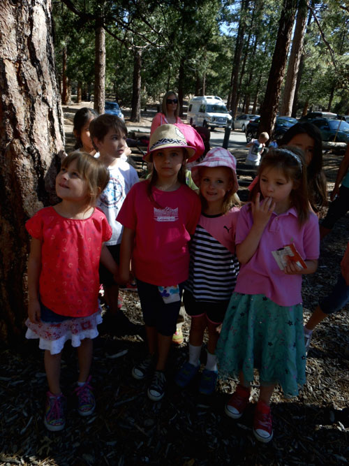 From left, friends Evelyn Johnson, Tagan Brown, Mikayla Gooch and  Valeria Morales, with  Dominic Esparza (back) of Barbara Longbrook's first-grade class enjoy a nice day at the Idyllwild Nature Center during the planned Southern California Edison power outage last Wednesday. Idyllwild School kindergarten through second-grade classes took a field trip to the Nature Center; third- through fifth-graders hiked the Ernie Maxwell Trail; and sixth- through eighth-graders traveled to the Palm Desert Aquatic Center.