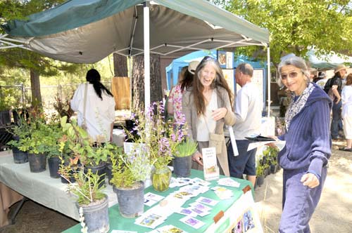 During the 2013 Idyllwild Earth Fair, Stephanie Denney (left) and Mariam Davies are enjoying the colorful lush native plants at the booth of The California Native Plant Society. Photo by Careena Chase