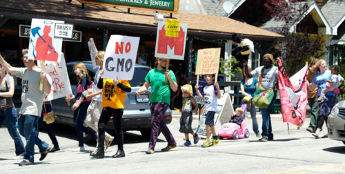 Idyllwild residents showed their support for the global March Against Monsanto that took place noon Saturday. About 50 people gathered at Harmony Monument, many with signs. A portion of the group marched around town (pictured) while others remained at the monument, handing out brochures, chanting and singing songs.  Photo by Rick Barker