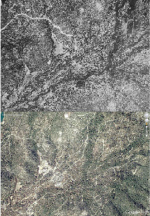 A 1939 aerial photo (top) of the Idyllwild area shows significantly less tree coverage than the 2013 photo (above).           Photos courtesy of Dr. Richard Minnich