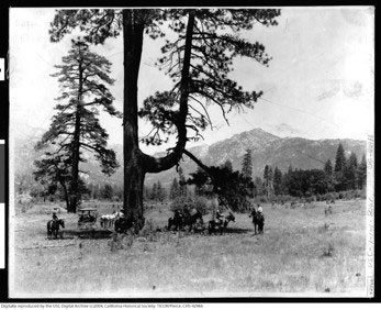 Strawberry Valley, about 1895, has far trees and less vegetation than today.      Photos courtesy of Robert Smith, IAHS