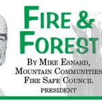 Fire and Forest: Hot-button issues & the code committee …