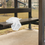 California outlaws most single-use carryout bags