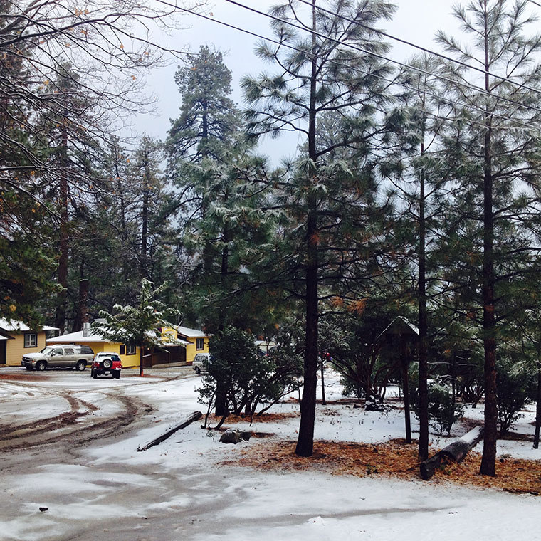 Looking at The Town Baker in Idyllwild on Wednesday morning. Photo by Halie Wilson