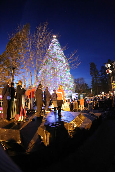 The moment the crowd is waiting for ... the tree is lit. Photo by Cheryl Bayse