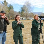 Bald eagles number 13 in latest count