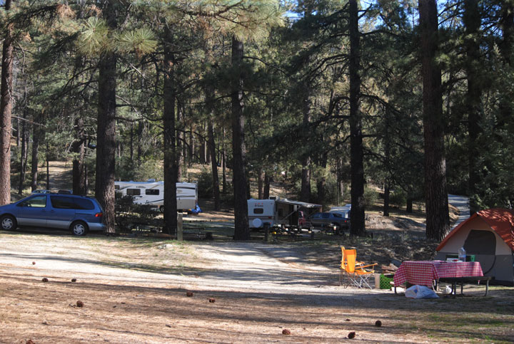Over the Presidents Day three-day weekend, the Idyllwild County Park was full of campers. Sites from the park's entrance to the back on Delano Drive (seen here) were occupied. Photo by J.P. Crumrine