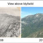 Journal from the James: The word from the woods: A century of change in Idyllwild …