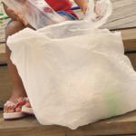 Plastic bag ban suspended until voters decide