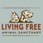 New policies increase adoptions at Living Free