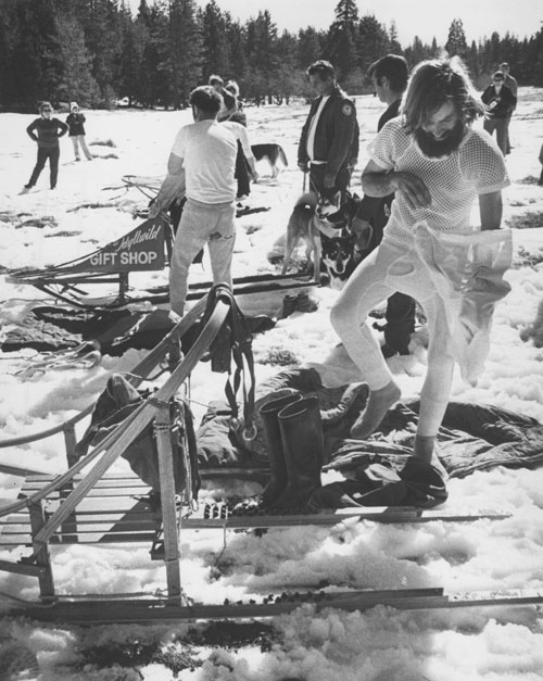 Sled dog races in February 1974. File photo