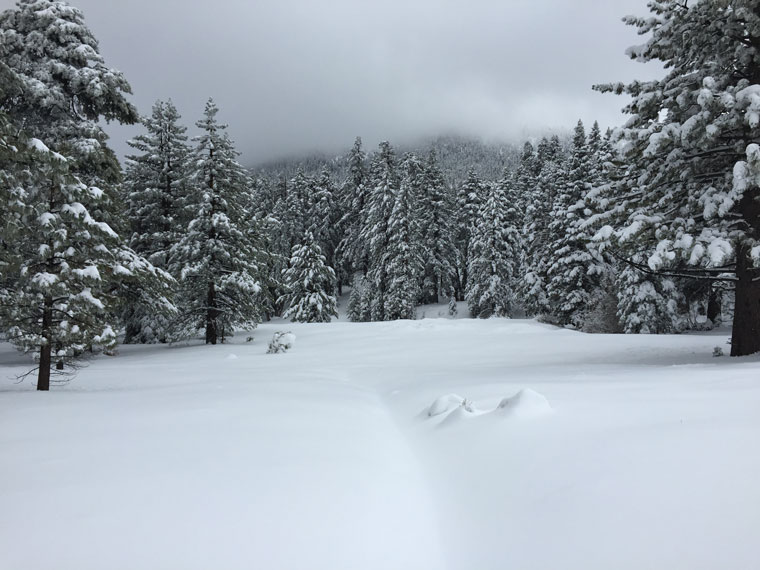 After the snowfall on Sunday and Monday, March 1 and 2, Tahquitz Valley had a blanket of 26 inches and a dark cloud above. Photo by Lee Arnson