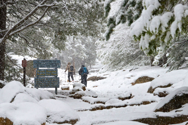 On Sunday morning, March 1, two brave hikers head up Devil's Slide Trail as the snow continues to fall. More weather photos inside. Photo by Gallagher Goodland