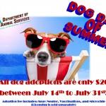 Riverside County's dog days