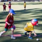 SPORTS: Town Hall Baseball …